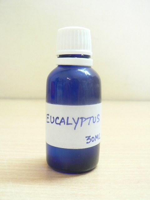 <b>EO - EUCALYPTUS</B></BR>WILD AND ORGANIC<br><B>Blue glass bottle of 30 ml</B>