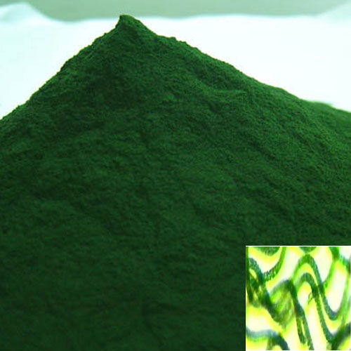 <b>SPIRULINA ORGANIC CERTIFIED<BR>HALAL and KOSHER</b><br>OFF - Spirulina Platensis<br>Powder - 1 Kg